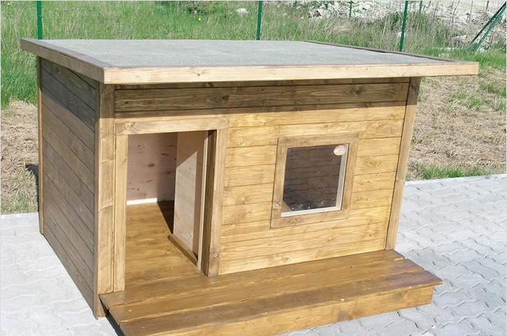 теплая будка для собаки картинки